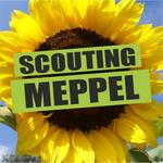 Logo van groep Scouting Meppel